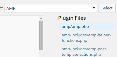 amp-template
